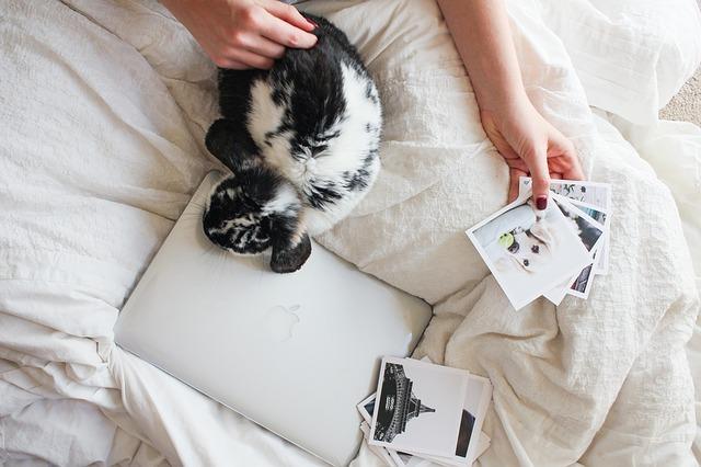 Osoba sedí na posteli, prezerá si fotografie a sedí pri nej zajac.jpg