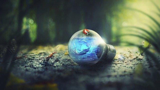 Ako žiť ekologicky, no moderne