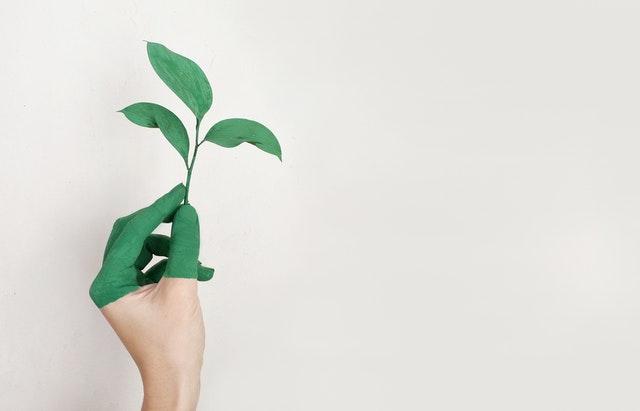 Človek má polovicu ruky namaľovanú na zeleno a drží v nej list.jpg